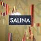 Salina (0)